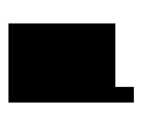 bicocchi-logo